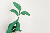 Image of hand painted green holding plant.