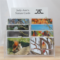 Nature cards by Judy-Ann Cazemier