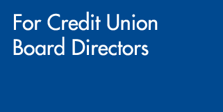 For Credit Union Executives