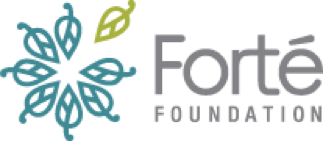 Learn more about the Forte Foundation fellows program